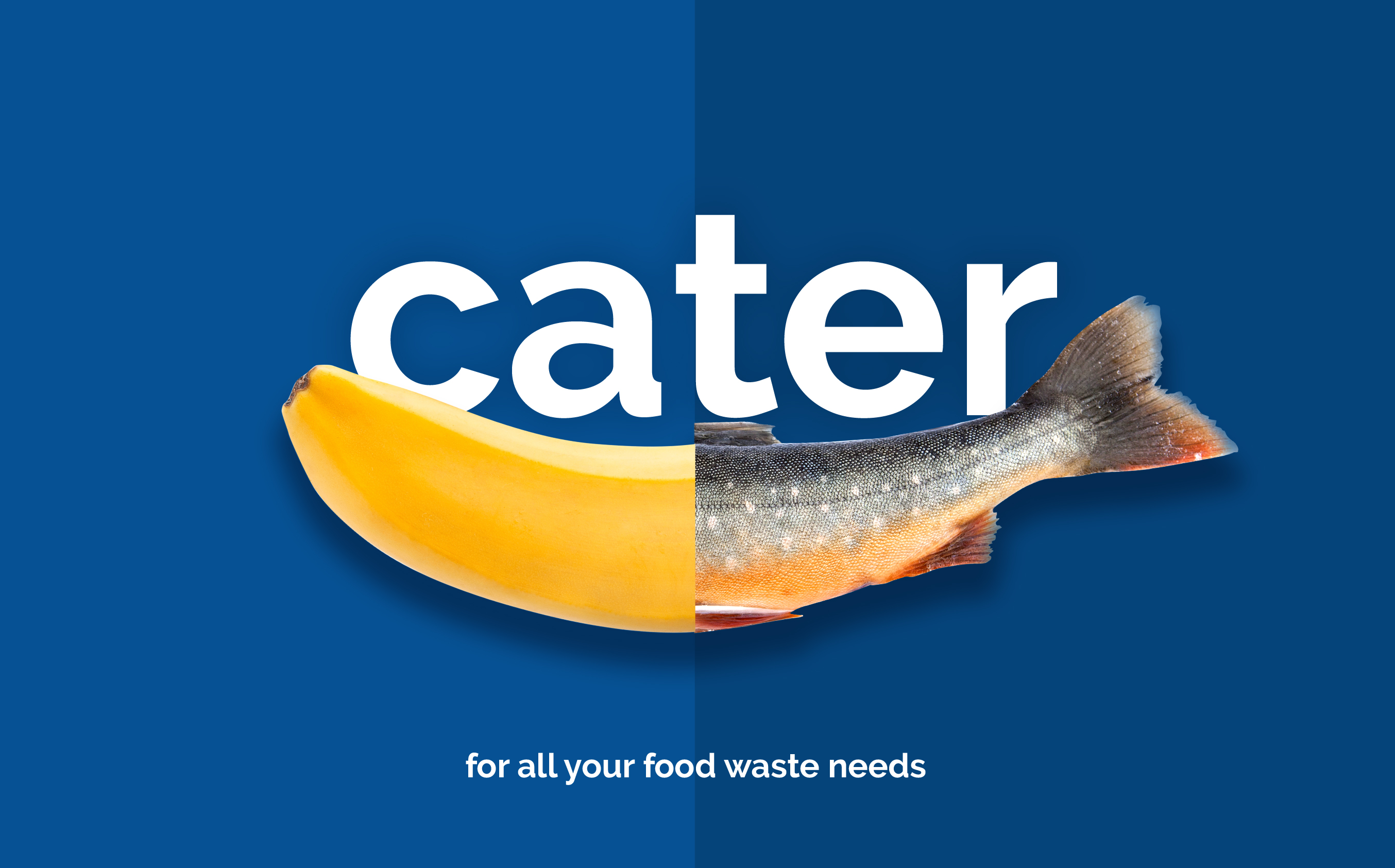 A banana morphs into a fish, with the word 'Cater'